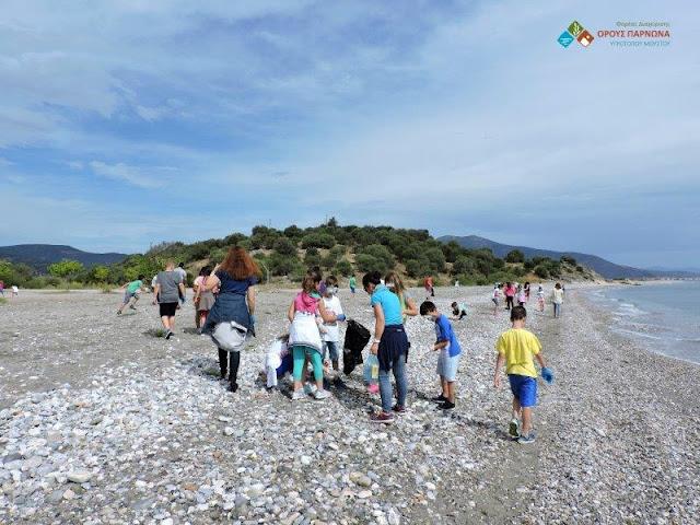Παγκόσμια Ημέρα Περιβάλλοντος - Περιβαλλοντικές δράσεις του Φορέα Διαχείρισης όρους Πάρνωνα και υγροτόπου Μουστού