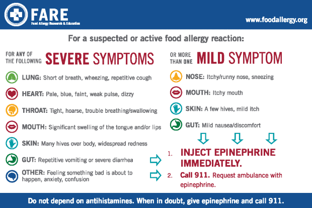 Food Allergy Symptoms For Dogs