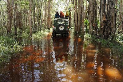 Nigel Foster image, Orange tannin rich water, Australia