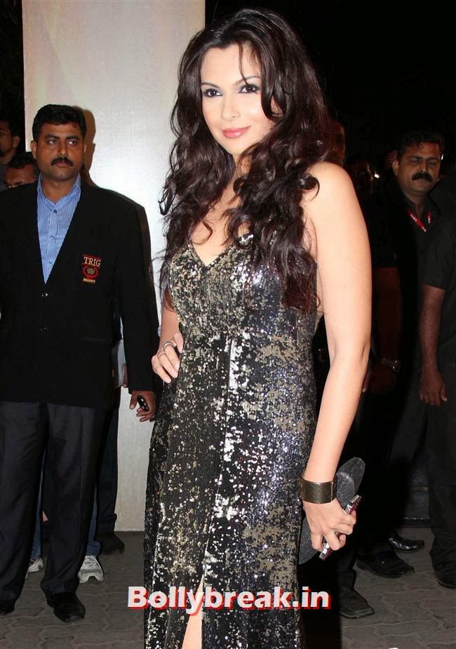 Mrinalini Sharma, Filmfare Awards 2014 Red carpet Images