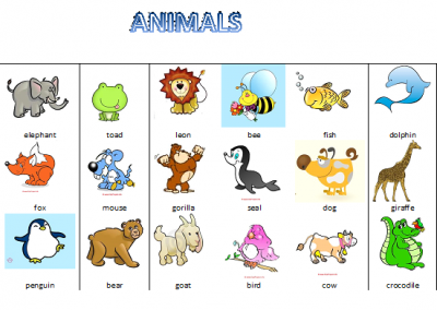 Nombres de animales en ingl s con im genes material for Cose con la g