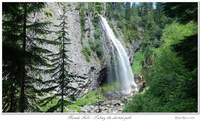 Narada Falls: Taking the shortest path