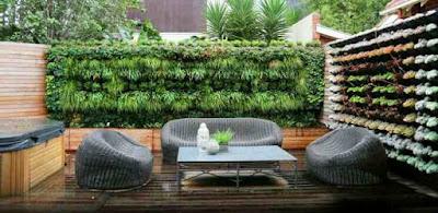 SOLUSI Cara Mudah Membuat Sendiri Taman Vertikal Murah di Rumah
