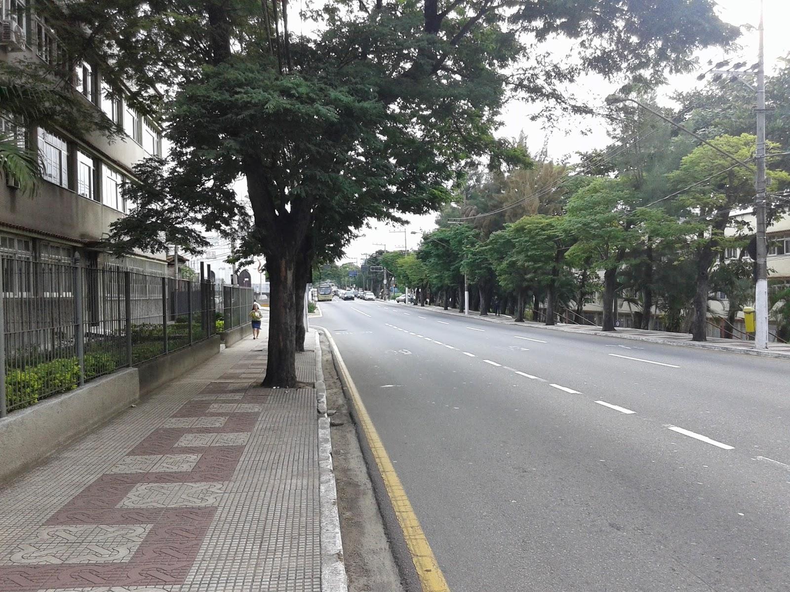 Avenida Dr. Nelson dos Santos Gonçalves