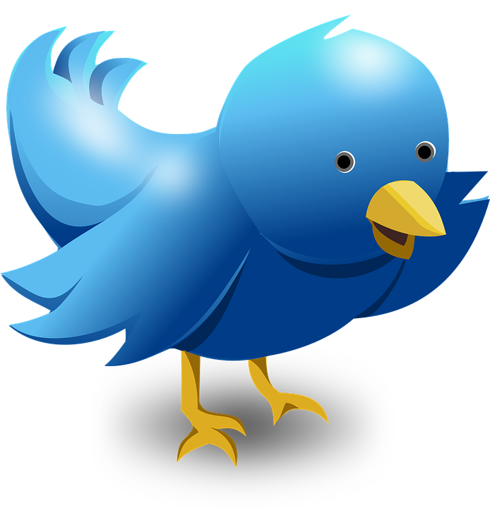 How to Gain Twitter Followers for Free Without Following Back