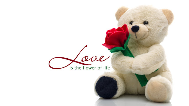http://whatsappprofile.blogspot.in/2016/02/happy-teddy-day-wishes-quotes.html