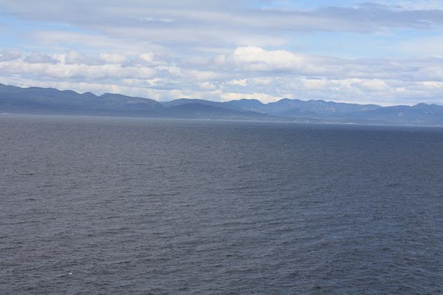 A view from the cruise ship while sailing to Alaska.