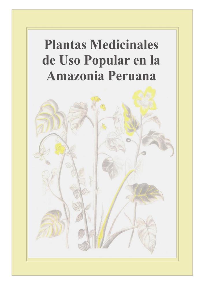 Plantas medicinales de uso popular en la amazonia peruana