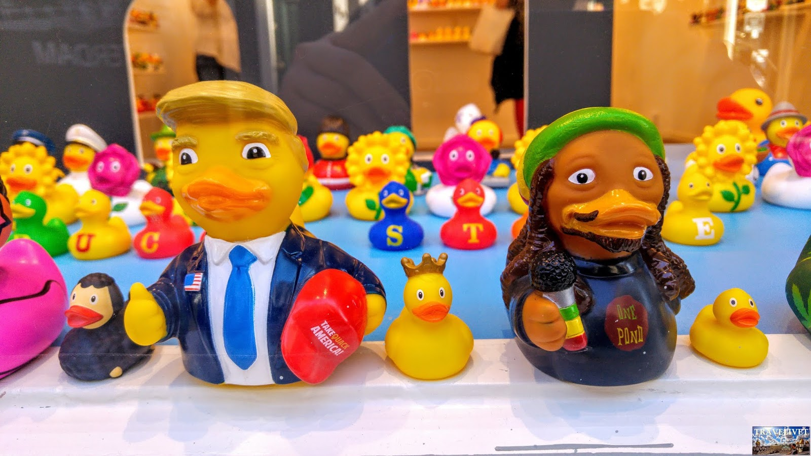 Pays Bas : Amsterdam les petits canards