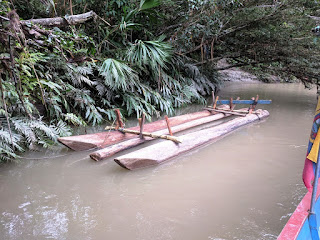 log raft, Amazon Basin, Ecuador
