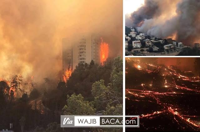 Hari ke-5 Israel Dilanda Kebakaran, Proses Evakuasi Warga Berlangsung Tegang Videonya Menyeramkan