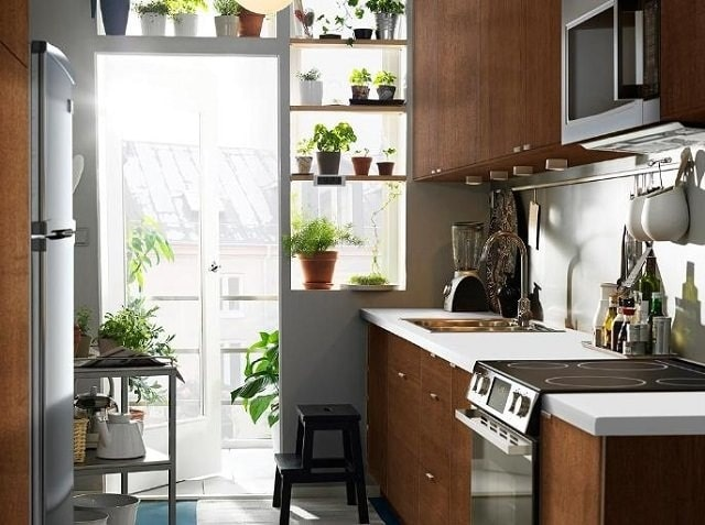 Bố trí cây xanh trong phòng bếp