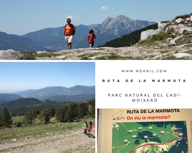 ruta-marmota-berguedà