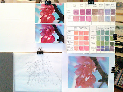 planning for a watercolor painting, color mixing grids, cherry blossom watercolor paintings, artist references