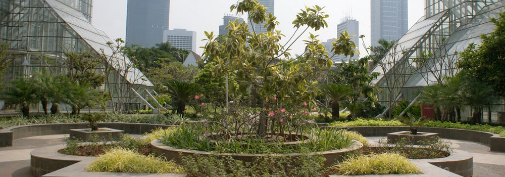 Taman Menteng Kesejukan Alami di Tengah Jantung Kota Jakarta