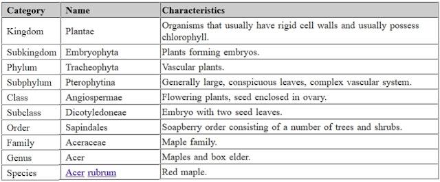 Klasifikasi Organisme Dalam Biosfer