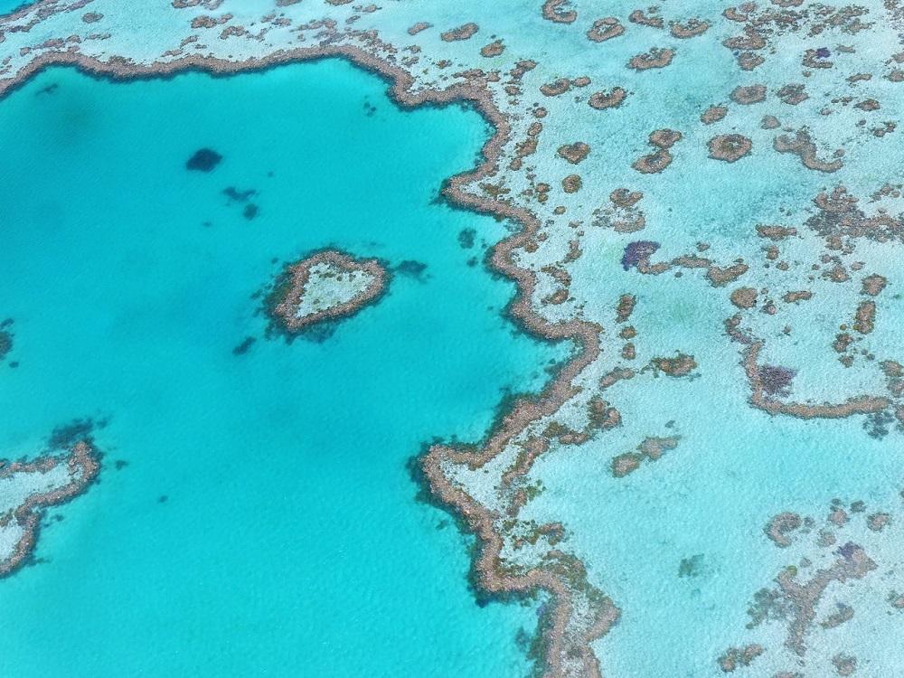 Heart Reef Queensland