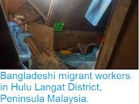 https://sciencythoughts.blogspot.com/2017/04/landslide-kills-two-bangladeshi-migrant.html