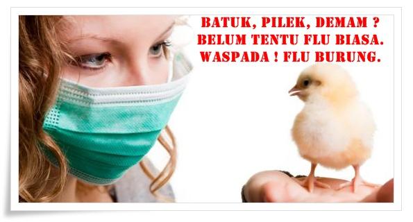 Pengobatan Penyakit Flu Burung Herbal