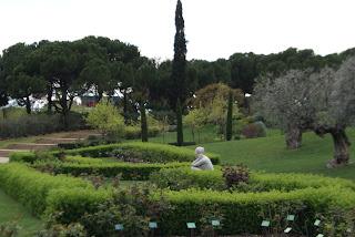 Roserar del Parc de Cervantes - Barcelona per Teresa Grau Ros