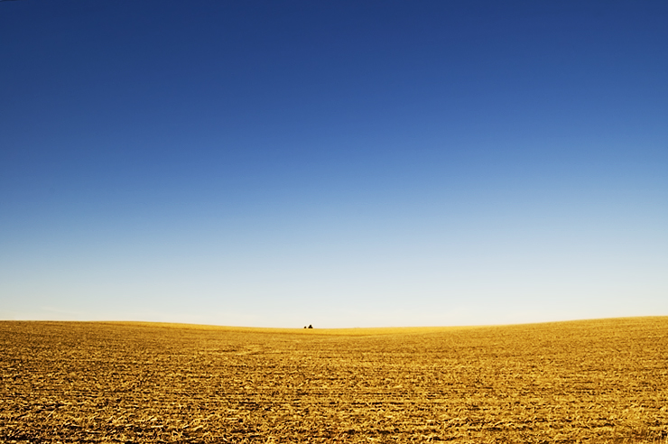 Arizona...: Chapter 12: The Great Plains and Prairies