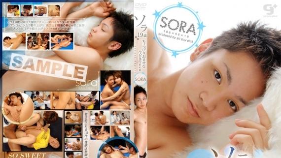 Sexual Report – Sora