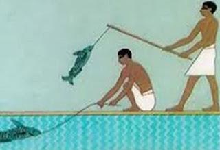 تاريخ صيد السمك منذ عهد المصريين القدماء