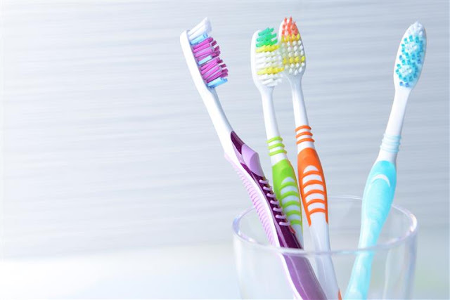 Bacteria in toothbrush