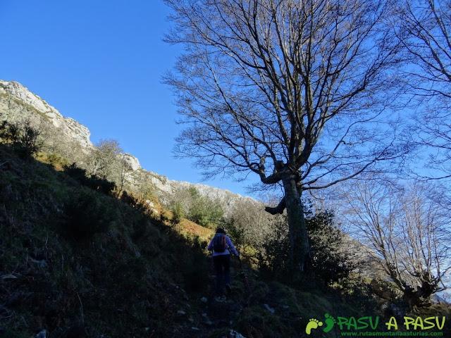 Subiendo al Valle del Piegüé desde la Foz de la Escalada