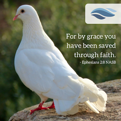 For by grace you have been saved through faith.