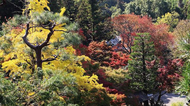 Imakumano Kannon-ji