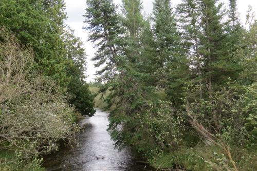 Tittabawassee River