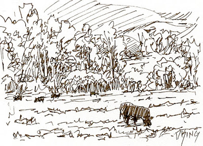 art sketch pen ink cow pasture rural landscape