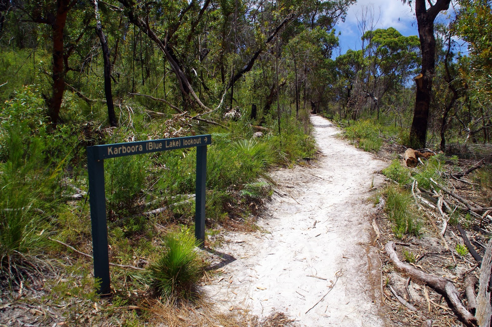 Walk to Blue Lake Stradbroke Island