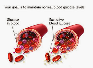 Obat Gula Darah Alami