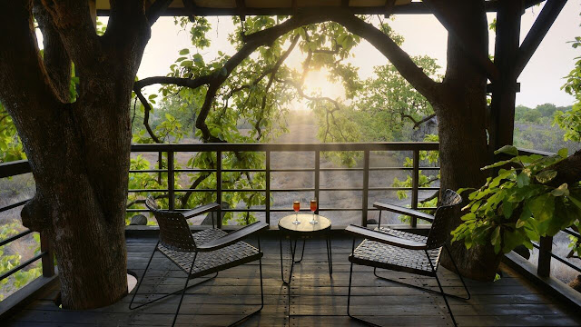 Pench Tree lodge pench national park best rates