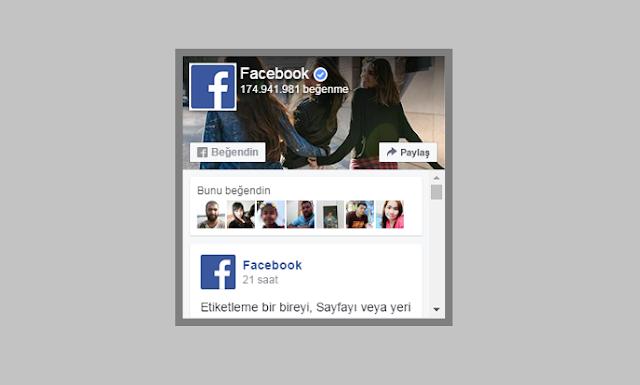 Blogger için Facebook eklentisi (widget) kodu