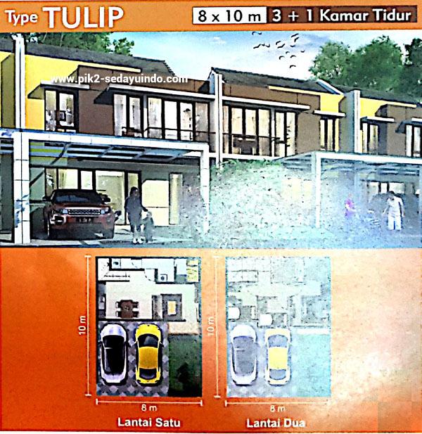 Rumah PIK 2 Dijual Tipe Tulip Cluster Virginia