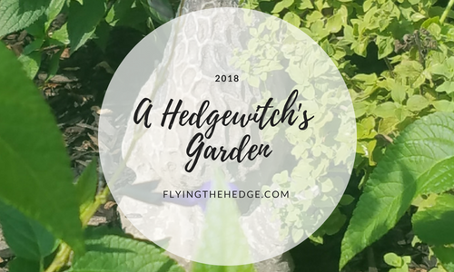 A Hedgewitch's Garden: 2018