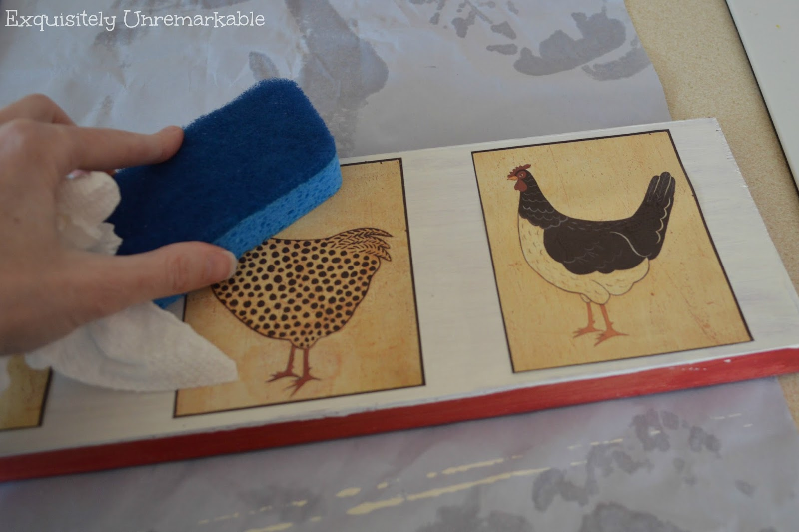 How To Apply Rooster Wallpaper Stickers