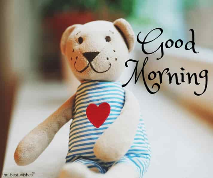 good morning images of teddy bear