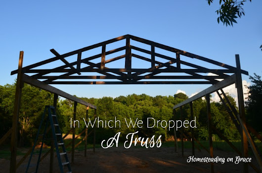 In Which We Dropped a Truss