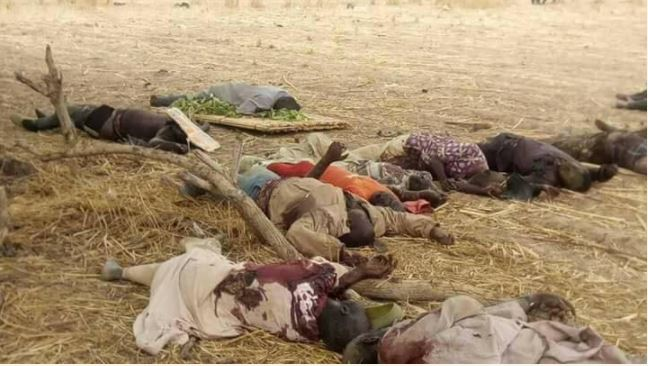 15 fulani herdsmen killed in zamfara