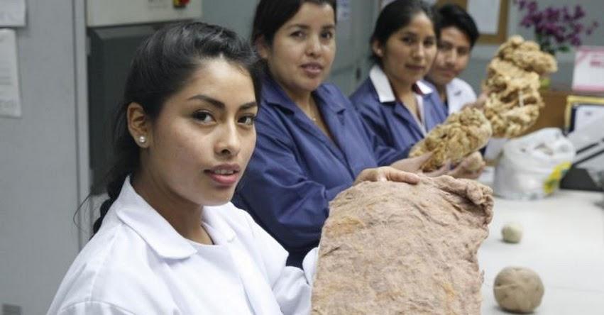 SENATI: Más de 16 mil mujeres se preparan en carreras técnicas - www.senati.edu.pe
