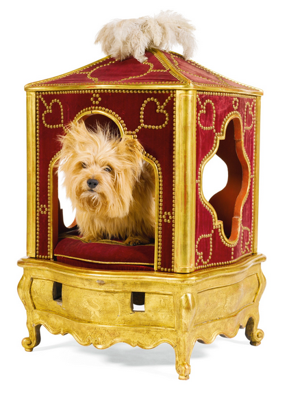 18th century sedan chair for a dog. This is much like when people put small dogs in a stroller and go for a walk.