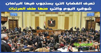 تعرف القضايا التي يستجوب فيها البرلمان شوقي اليوم والتي منها ملف المرتبات