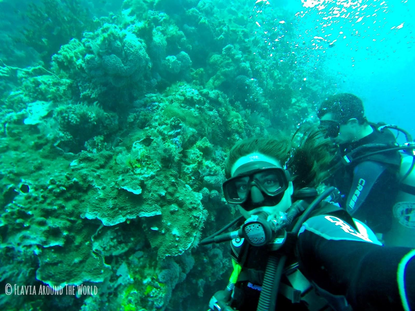 Haciendo submarinismo en Komodo