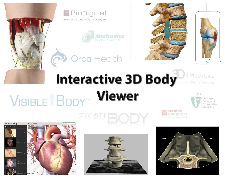 Interactuando con el cuerpo humano en 3D (Interactive 3D Body viewer ...