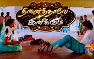 Ninaithale Inikum 20-11-2018 | Polimer Tv Serial