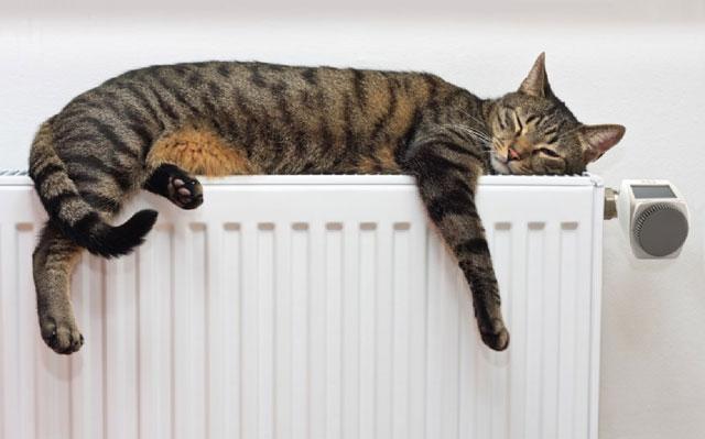 Reparación e instalación de calderas, termos y calentadores